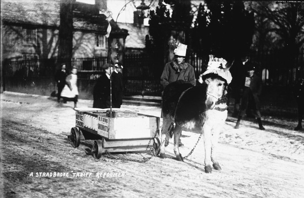 W114.Donkey CArt Tariff Reform.jpg
