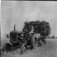 Valley Farm harvest 1 AR.jpg