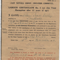 william jmes catling school leave cert 1913.jpg