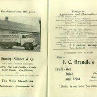 55 gymkhana prog ads 1 skinners and brundle.jpg
