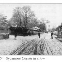 sycamore corner Webb c1910.jpg