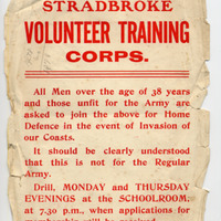 reduced MN Vol Corps advert copy.jpg