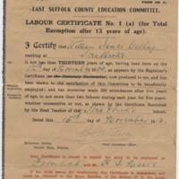 william jmes catling school leave cert 1913.jpg