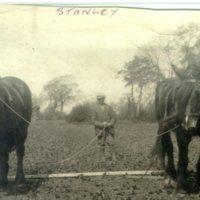 horse ploughing Barley Green Farm.jpg