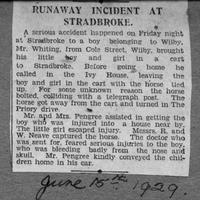 MN runaway horse and cart 1929 copy.jpg