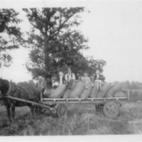 Valley Farm harvest 4 AR.jpg