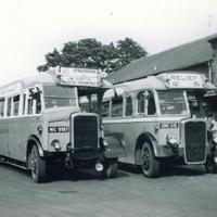 bus no 49 to Stradbroke.jpg